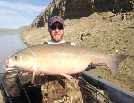 Fort Peck Reservoir Fish and Hatchery crews receive award