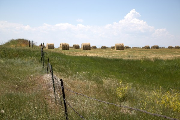 A barbed wire fence encloses a crowded field of hay bales against a blue Montana sky.
